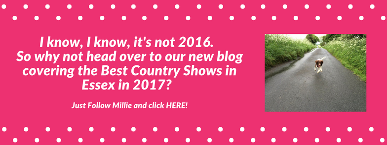 best country shows in essex