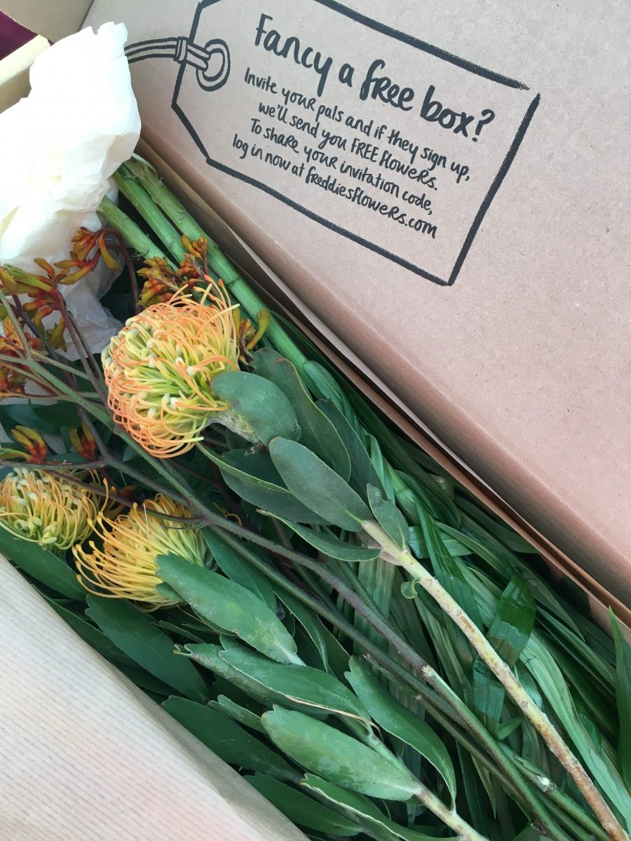 Flower Subscription Box Packaging Freddie's Flowers