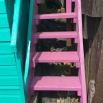 Beach_Hut_Hire_Walton_Essex_Millie_010