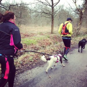 What is Canicross?  5 reasons to start running with your dog